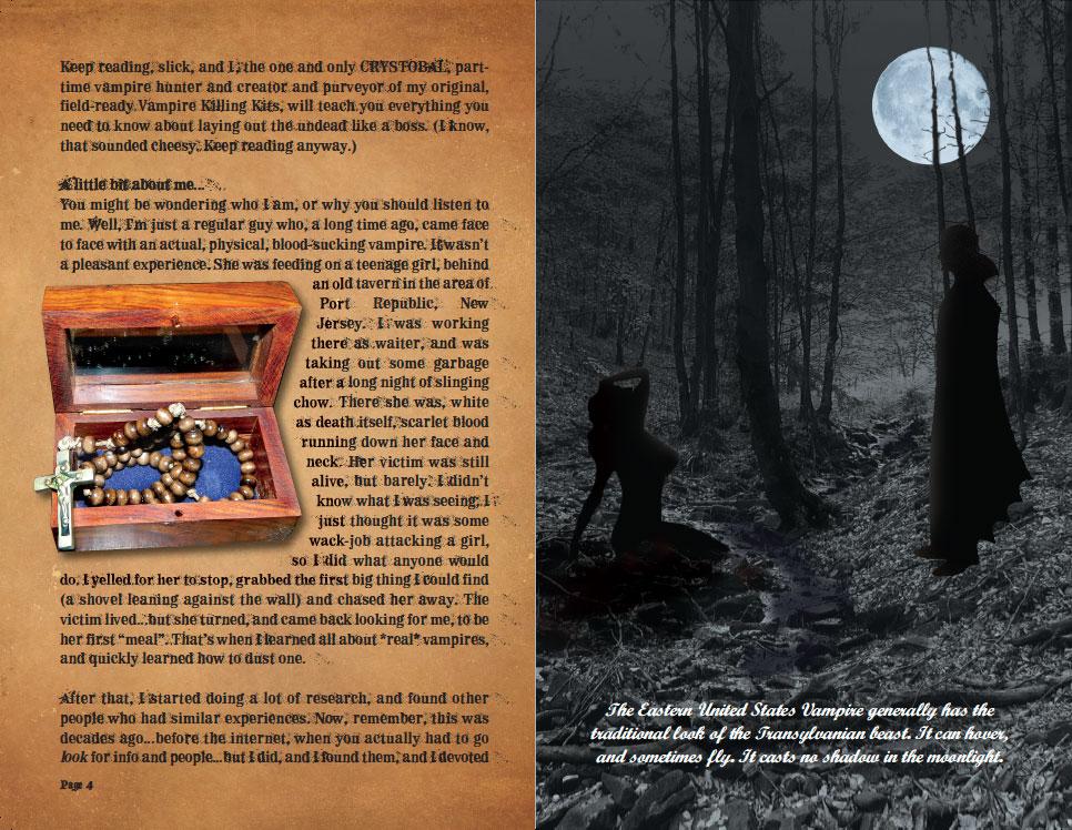 how-to-kill-vampires-book-dracula